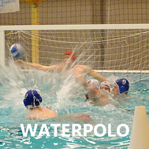 button-waterpolo